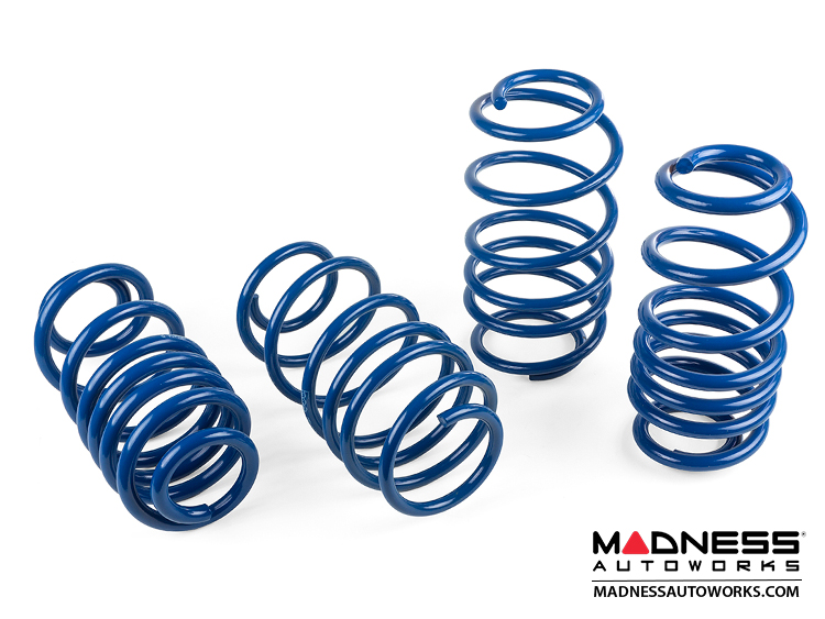 smart fortwo Lowering Spring Set - 451 model - MADNESS